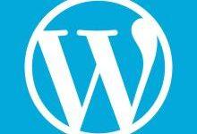wordpress_wp中文标签分类404的解决办法-Sleep's Blog